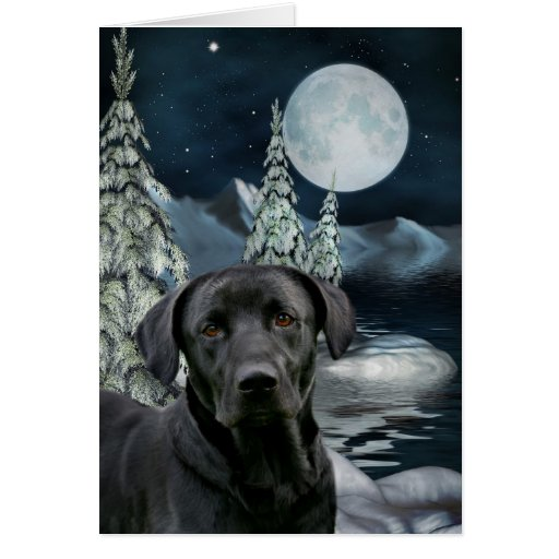 Black lab Christmas Cards