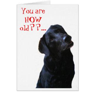 Black Lab Dog Tipping Head Wishing Happy Birthday Greeting Card