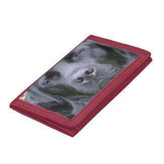 Black Lab Dog Tri-fold Wallets