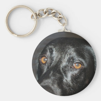 black lab eyes basic round button key ring