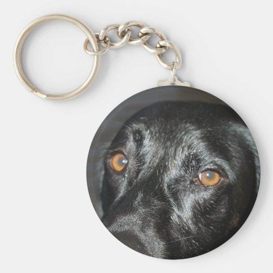 black lab eyes basic round button key ring