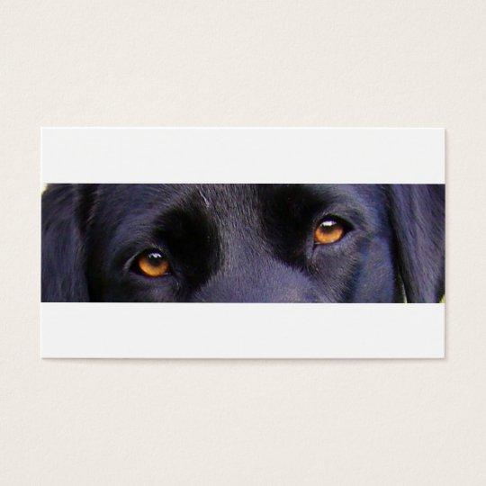 black lab eyes business card