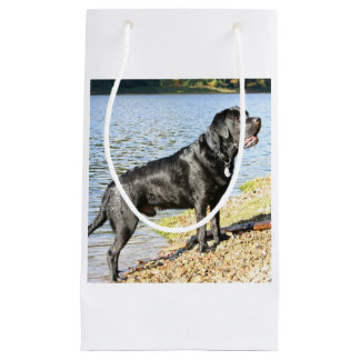 black lab full.png small gift bag