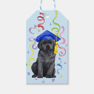 Black Lab Graduate