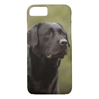 Black lab iPhone 7 case