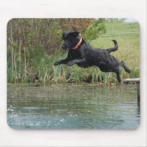 Black Lab Jumping mouse pad