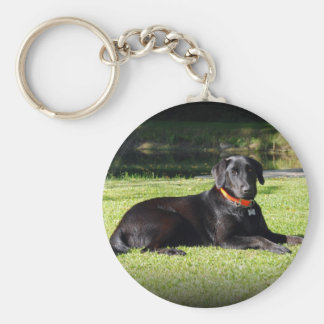 Black Lab Key Ring