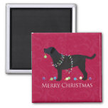Black Lab Merry Christmas Design Magnets