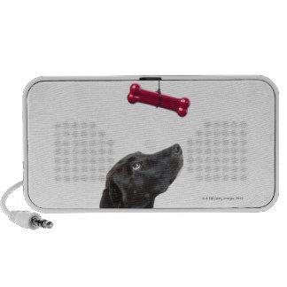 Black lab mixed dog with red dog bone travel speaker