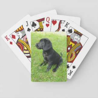 black lab puppy.png playing cards