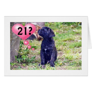 "BLACK LAB PUPPY SAYS ""ENJOY 21st BIRTHDAY!"" Greeting Card"