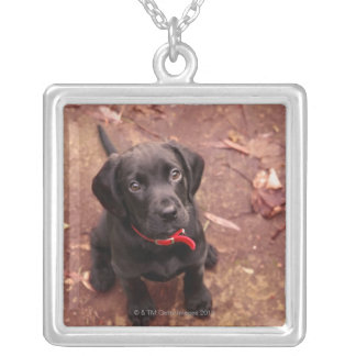 Black Lab Puppy Silver Plated Necklace