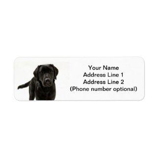black lab return address label