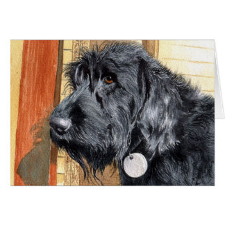 Black Labradoodle #1 Greeting Cards