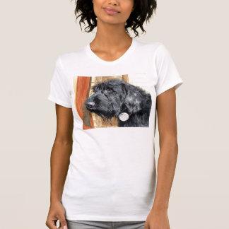 Black Labradoodle #1 Womens Shirt