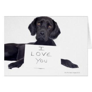 Black Labrador 13 Months Card