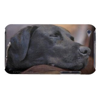 Black labrador asleep on sofa, close-up iPod touch Case-Mate case