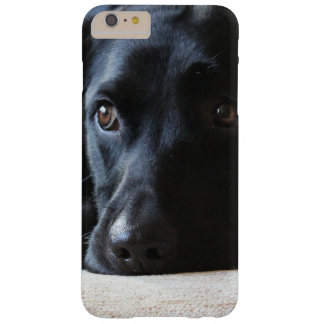 Black Labrador Barely There iPhone 6 Plus Case