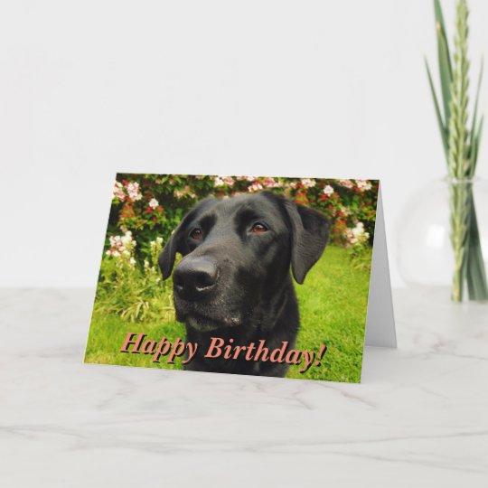 Black Labrador Birthday Card Zazzle