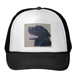 Black Labrador Cap