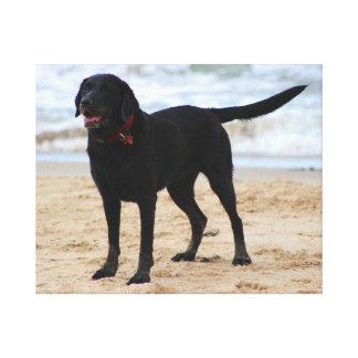 Black Labrador Dog Canvas Print