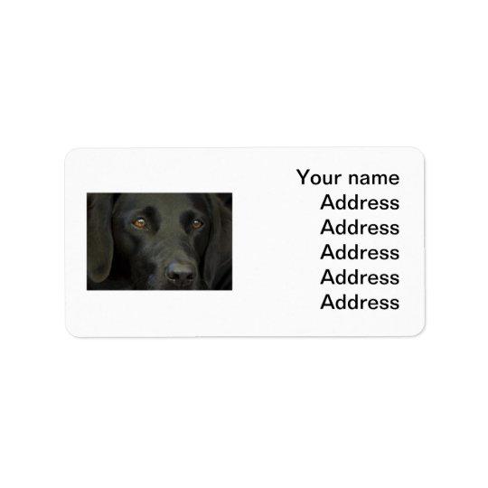 Black Labrador Dog Label