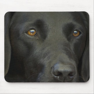 Black Labrador Dog Mouse Pad
