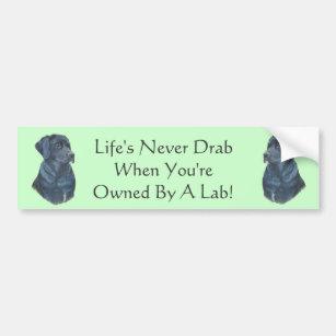Dog Slogans Bumper Stickers & Car Stickers | Zazzle UK