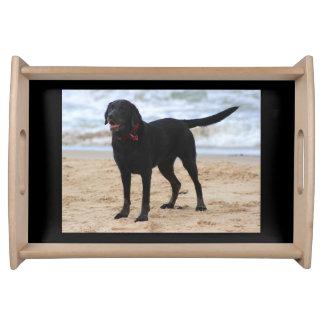 Black Labrador Dog Serving Tray