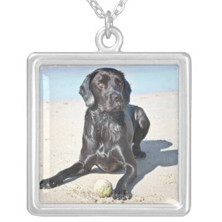Black Labrador Dog sitting on the Beach Silver Plated Necklace