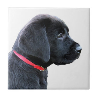 Black Labrador - Dressed in Red Tile