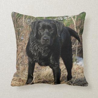 Black Labrador - Early Spring Hunt Cushion