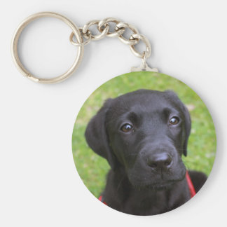 Black Labrador Key Ring Basic Round Button Key Ring