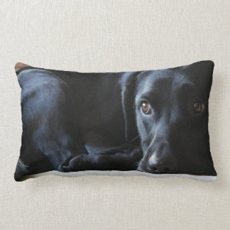 Black Labrador Lumbar Cushion
