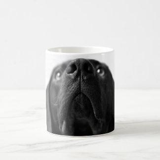 Black Labrador nose up close Coffee Mug