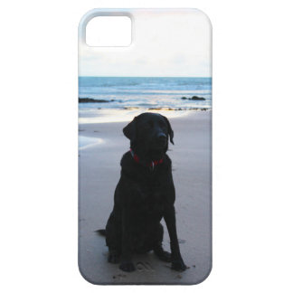 Black Labrador on a beach Case For The iPhone 5