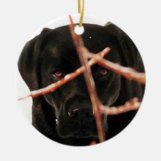 Black Labrador - Peeking Branches Christmas Ornament