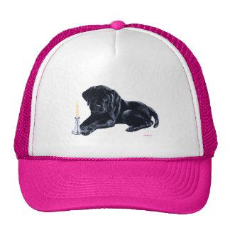 Black Labrador Puppy Cap