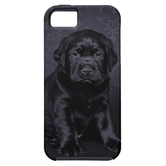 Black Labrador puppy Case For The iPhone 5