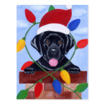 Black Labrador Puppy Christmas Post Cards