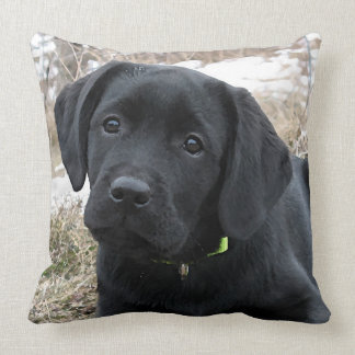 Black Labrador Puppy - Early Spring Hunt Cushion