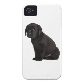 Black Labrador Puppy iPhone 4 Case-Mate Cases