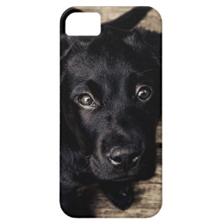 Black Labrador Puppy iPhone 5 Covers
