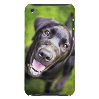 Black labrador puppy looking upwards, close-up iPod touch Case-Mate case