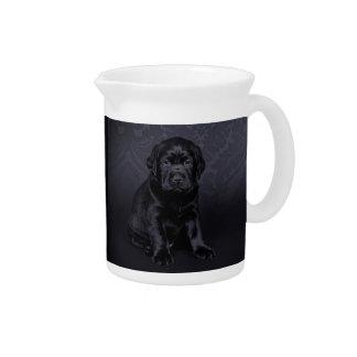 Black Labrador puppy Pitcher
