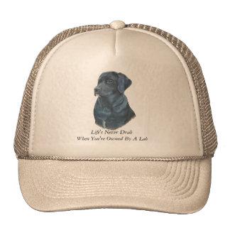 black labrador realist dog portrait art and slogan cap