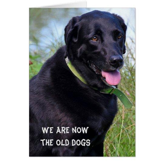 Black Labrador Retriever birthday humour Card