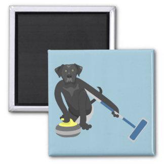 Black Labrador Retriever Curling Magnet