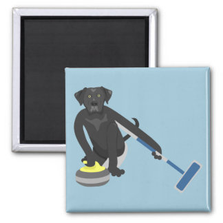 Black Labrador Retriever Curling Square Magnet