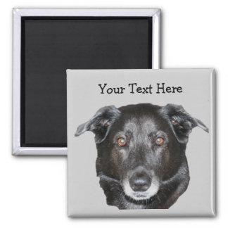 Black Labrador Retriever Dog Magnet